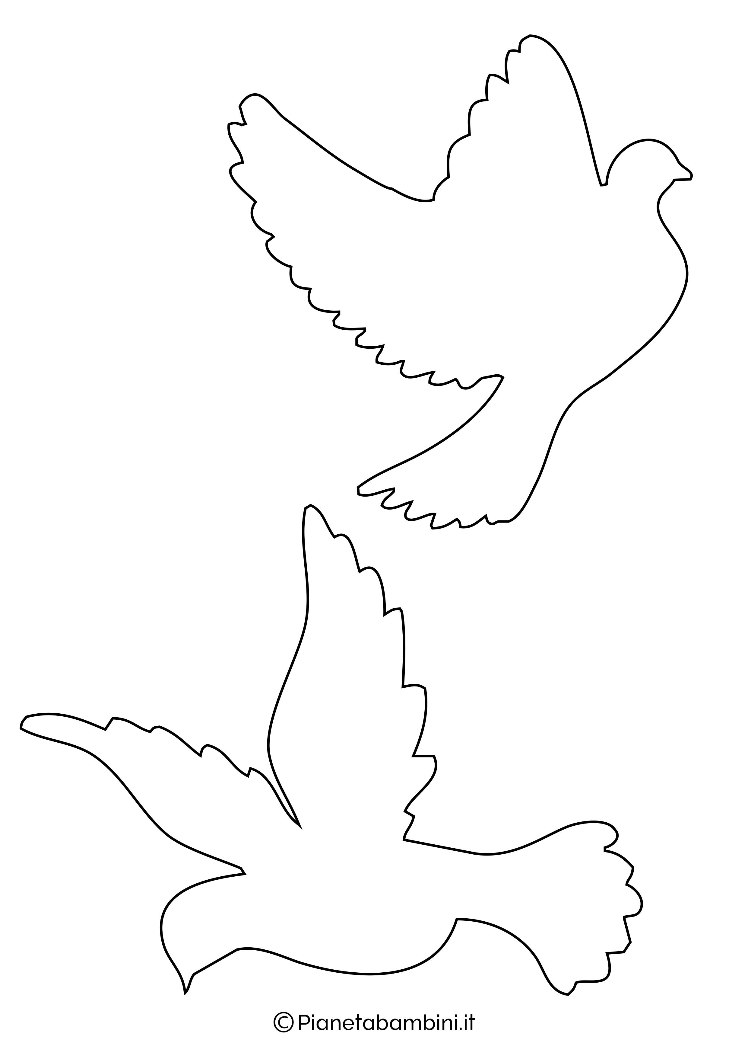 Disegni di colombe medie 1