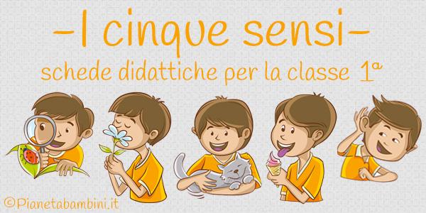 Esercizi sui cinque sensi per la classe prima della scuola primaria