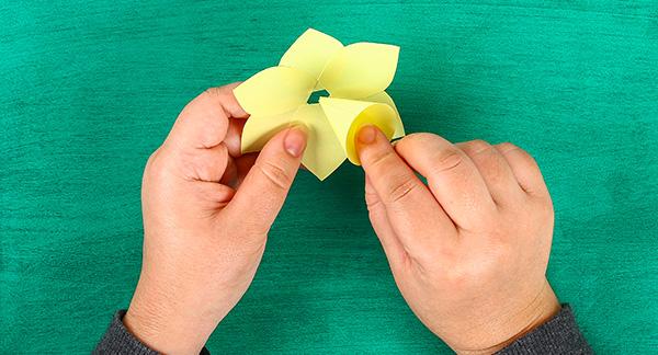 Come costruire il fiore di narciso