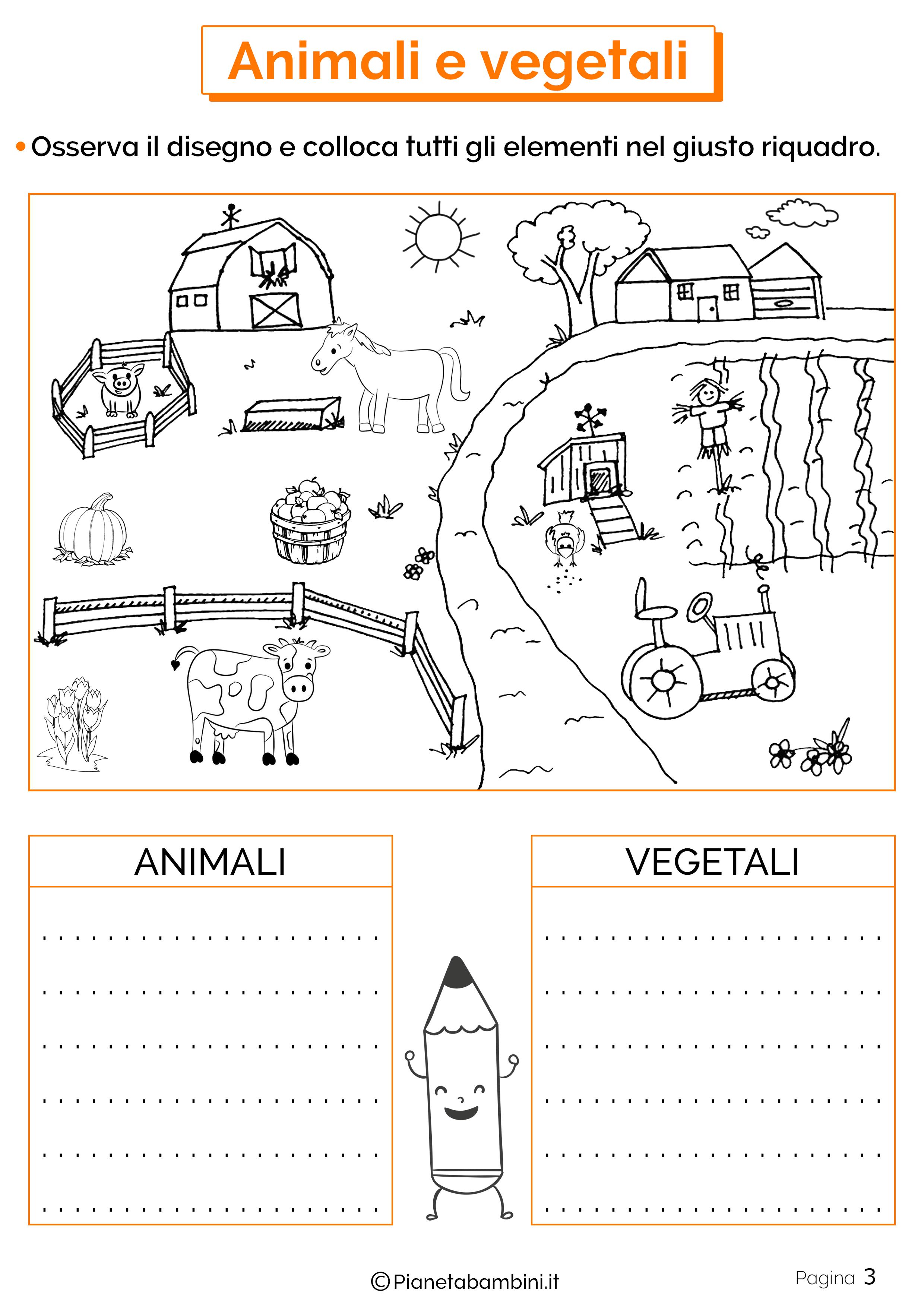 Esercizi su animali e vegetali 3