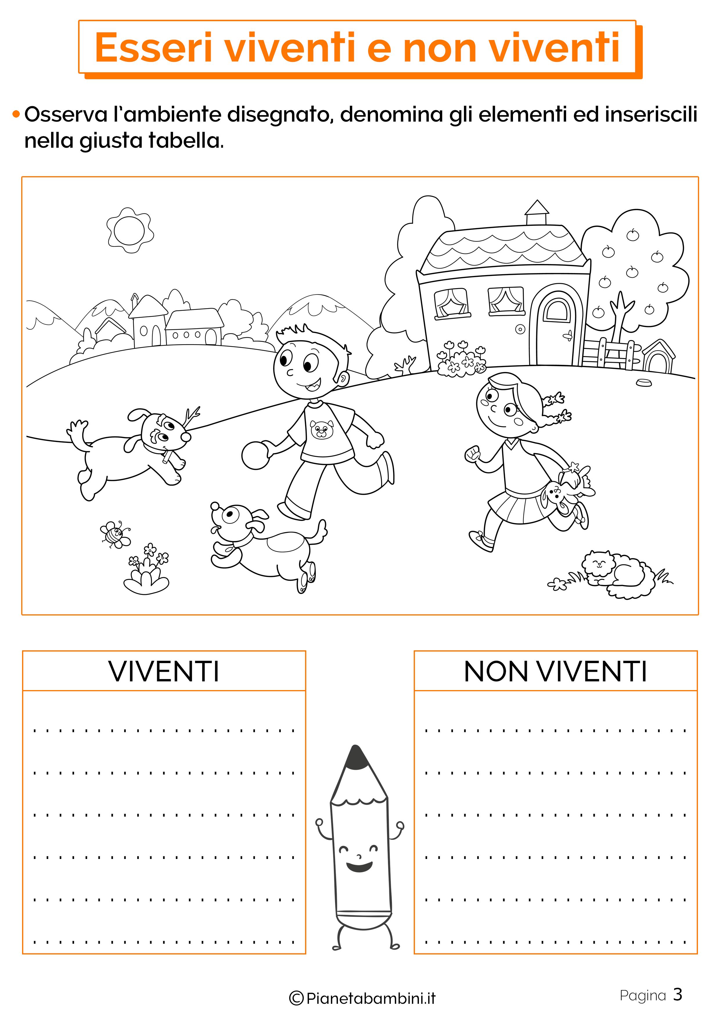 Esercizi su esseri viventi e non viventi 3