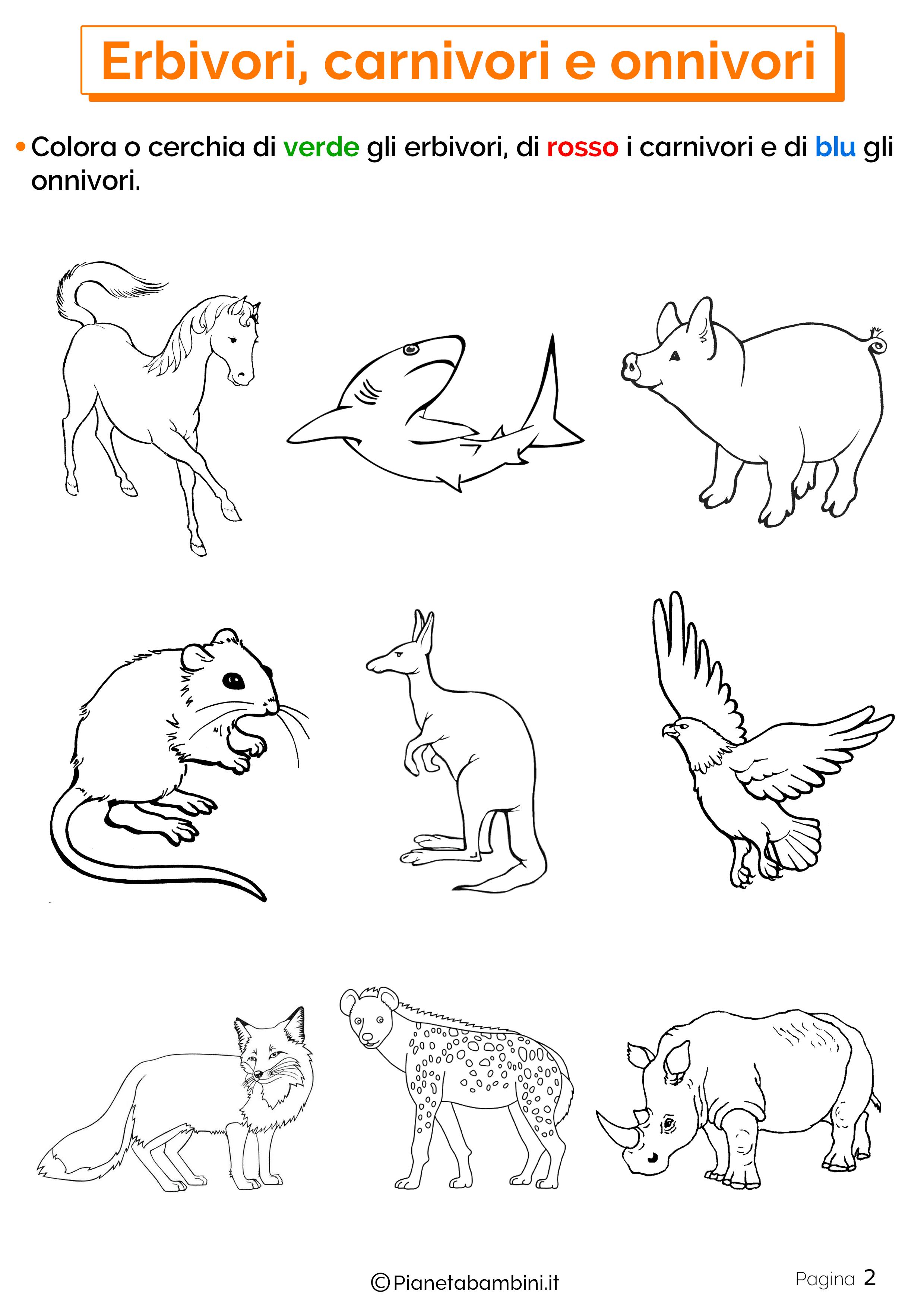 Disegni Da Colorare Di Animali Onnivori.Erbivori Carnivori E Onnivori Schede Didattiche Per La