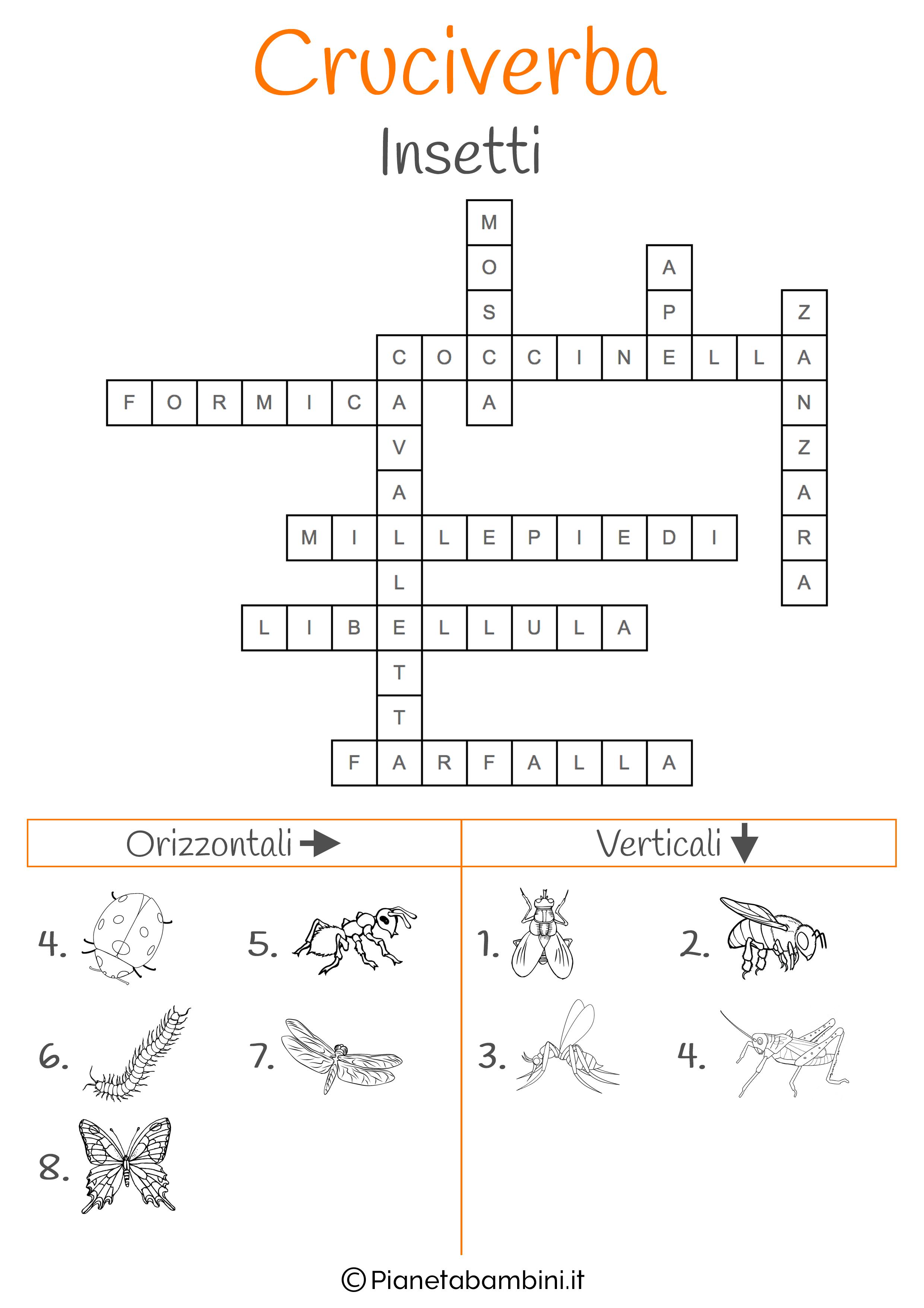 Soluzione cruciverba illustrato sugli insetti