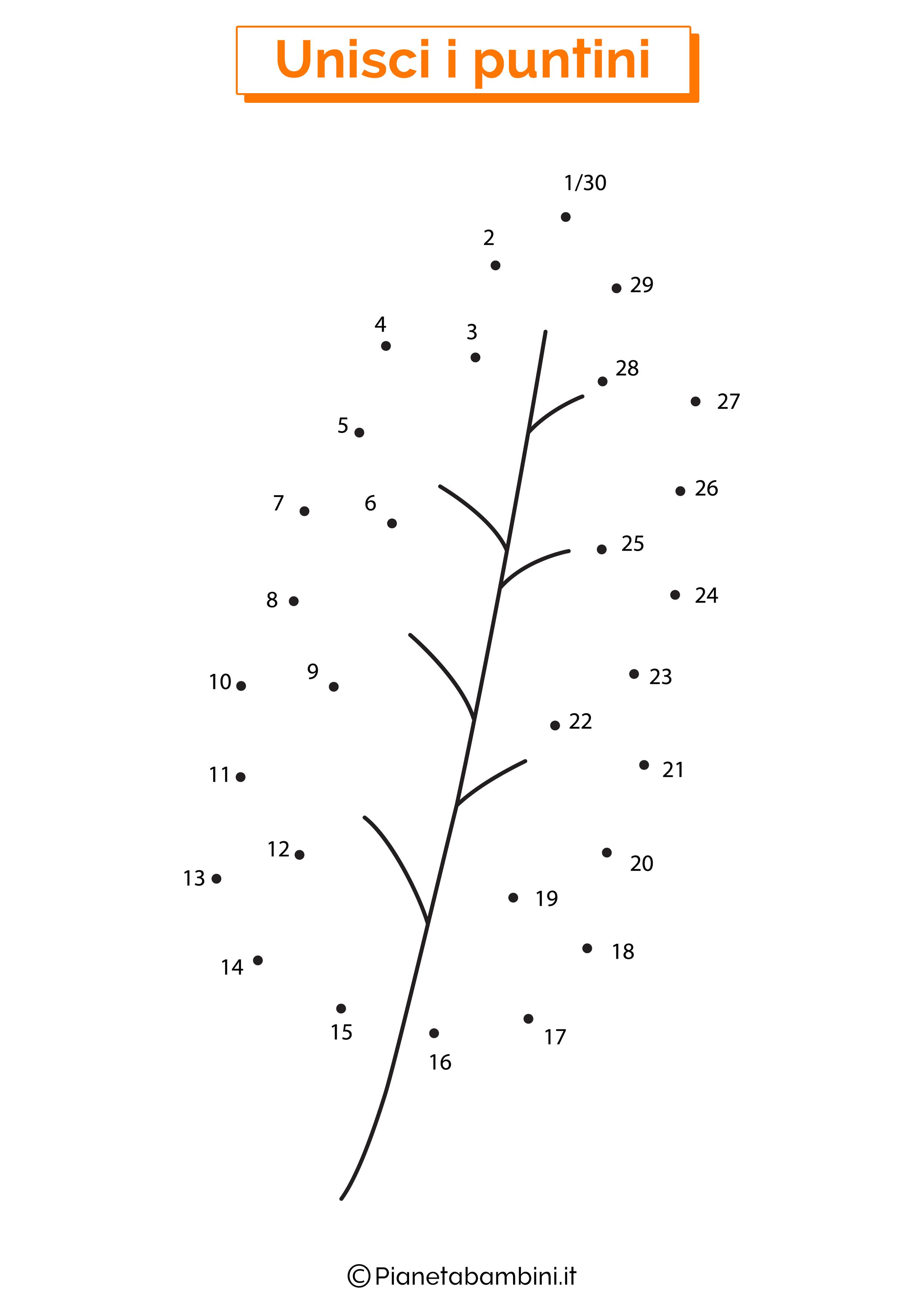 Disegno unisci i puntini foglia quercia