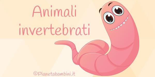 Esercizi sugli animali invertebrati per la scuola primaria