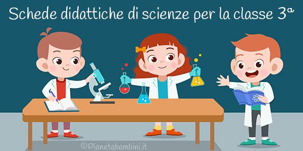 Schede didattiche di scienze sul programma completo di terza classe