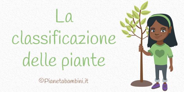 Esercizi sulla classificazione delle piante per la scuola primaria