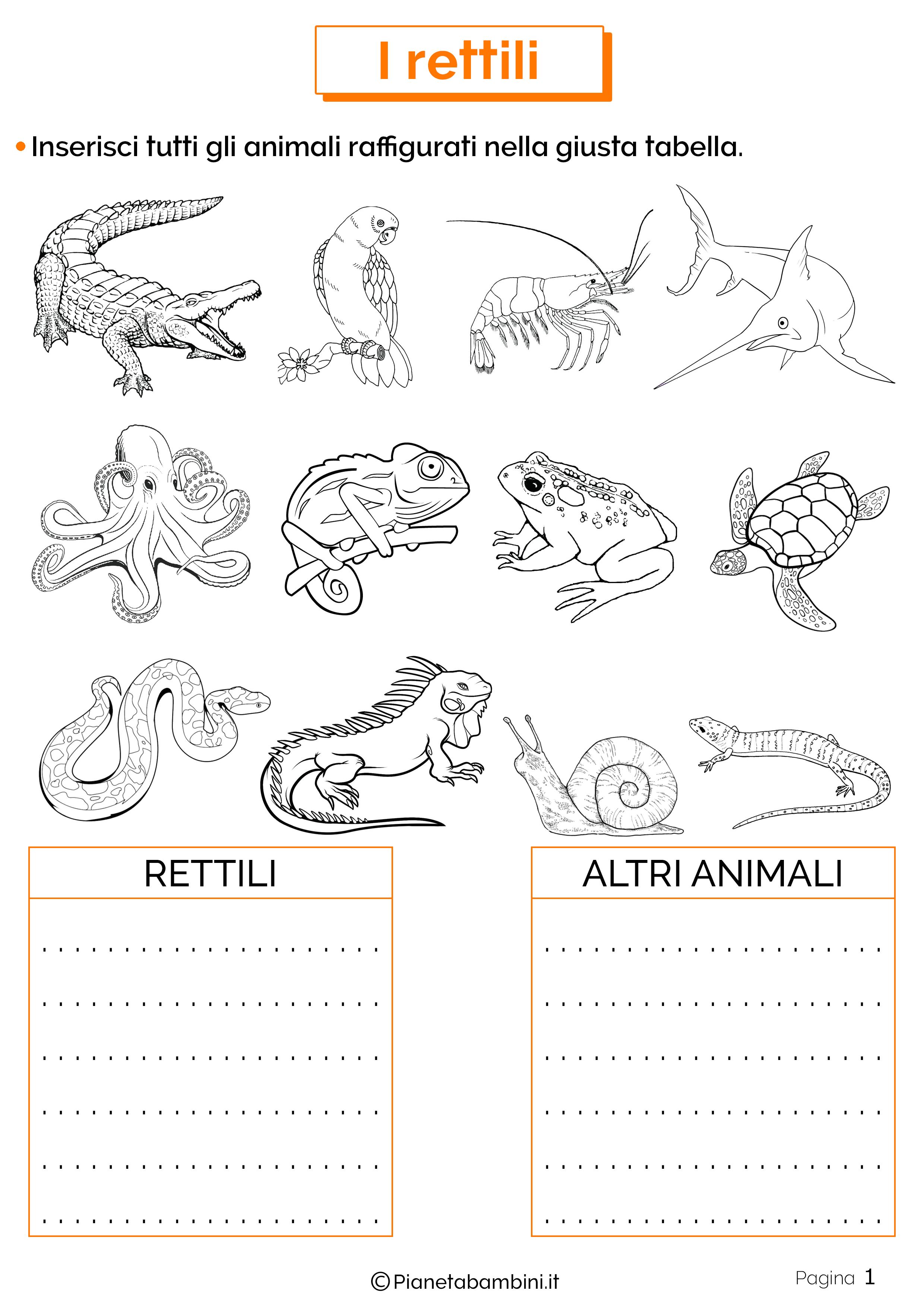 Esercizi sui rettili 1