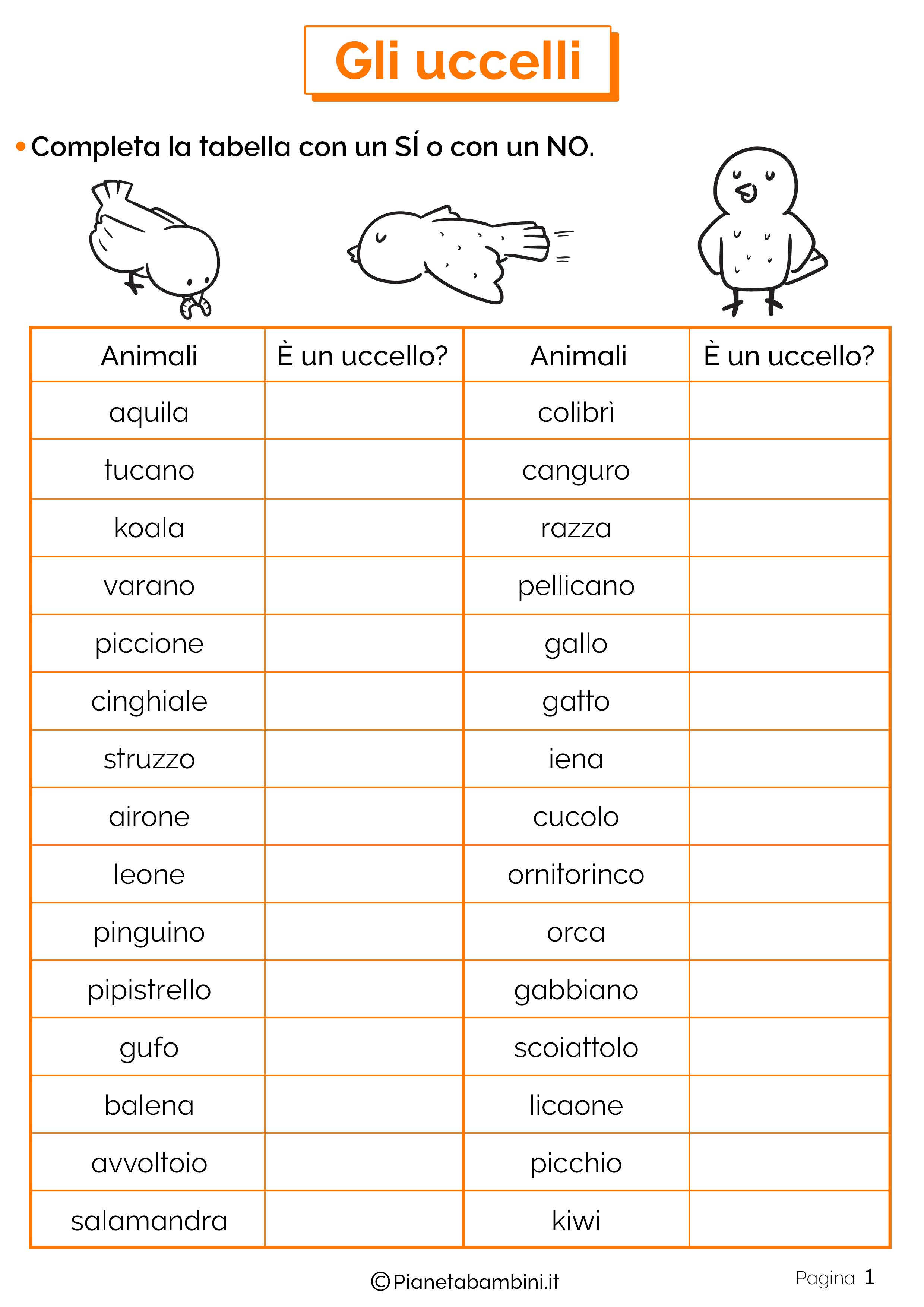 Esercizi sugli uccelli 1