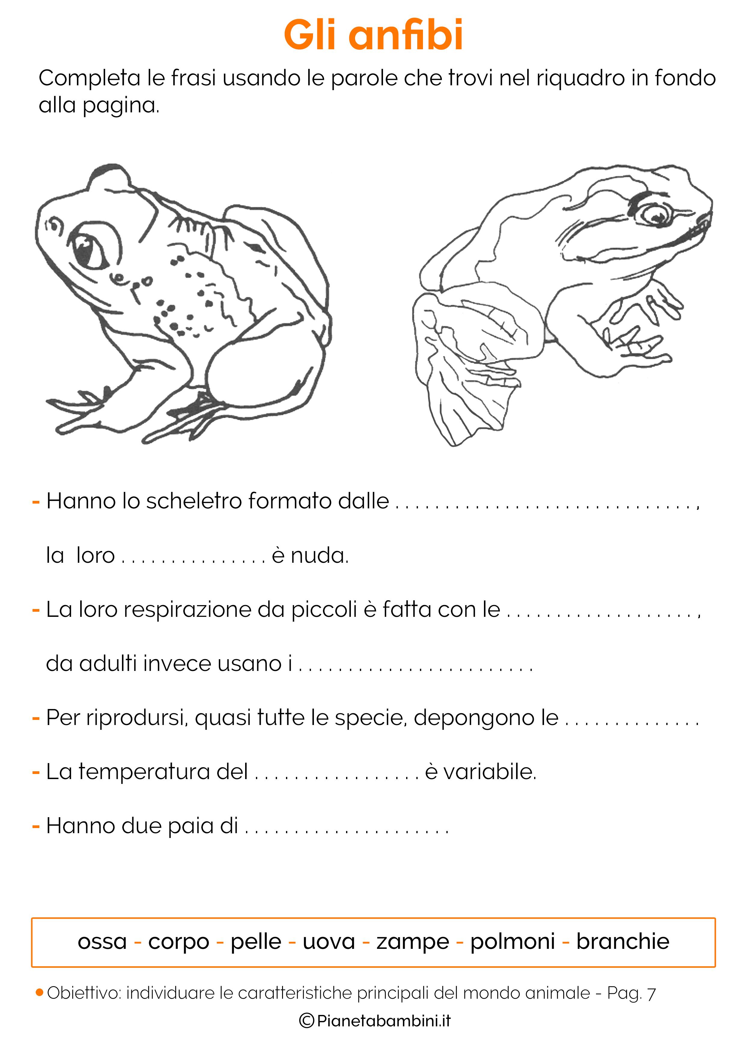 Esercizi sulla classificazione degli animali 07
