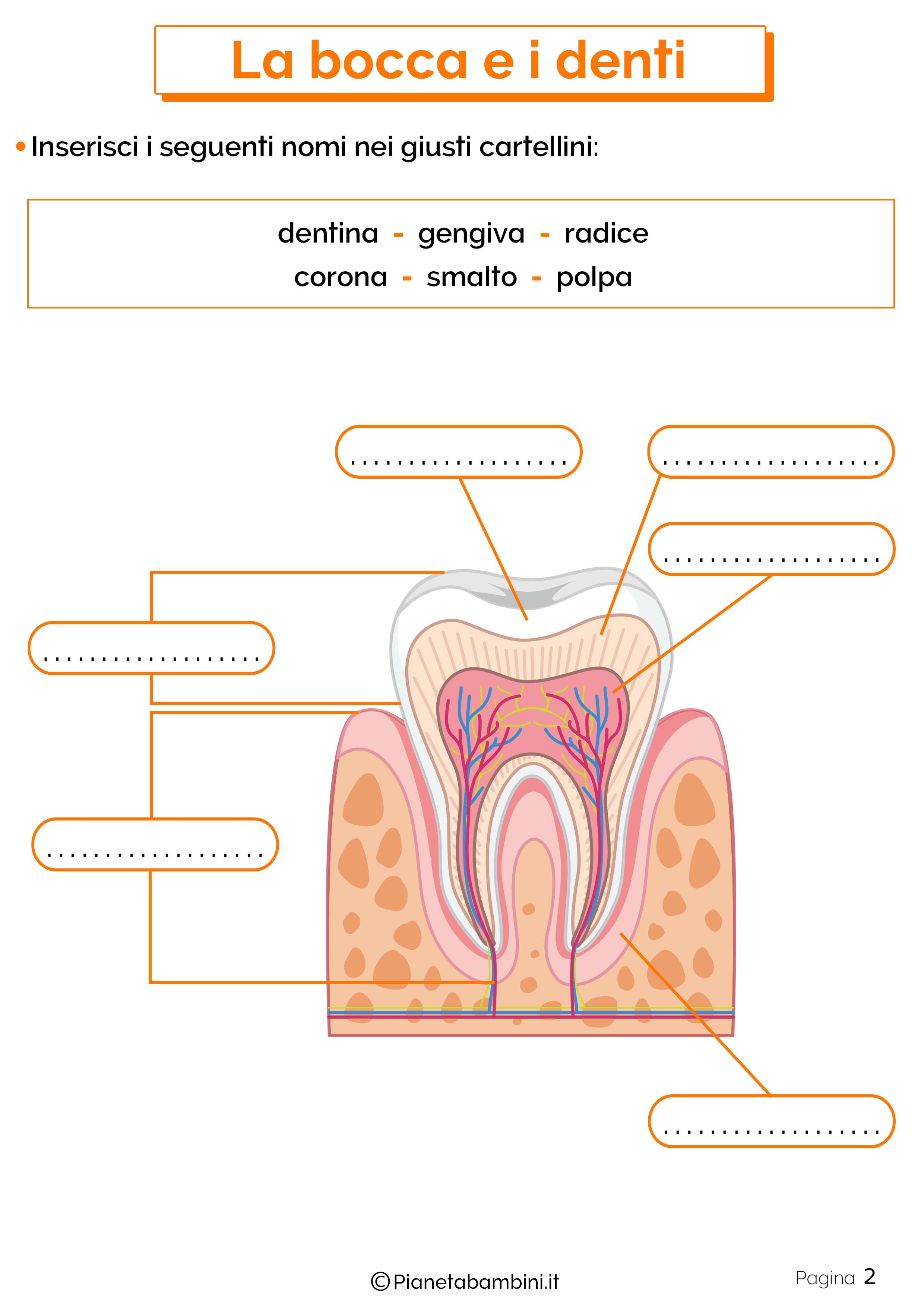 Esercizi su bocca e denti 2