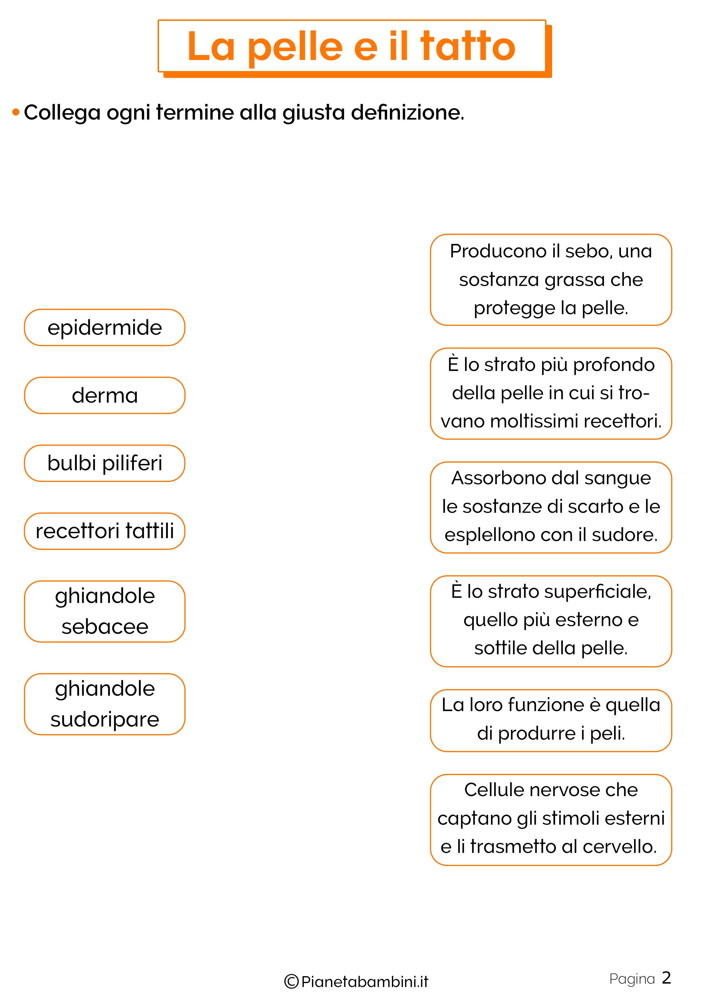Esercizi su pelle e tatto 2