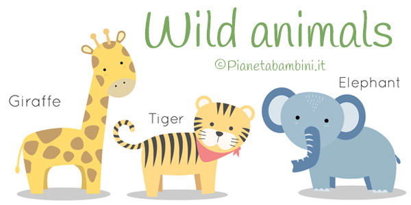 Esercizi sugli animali selvaggi in inglese