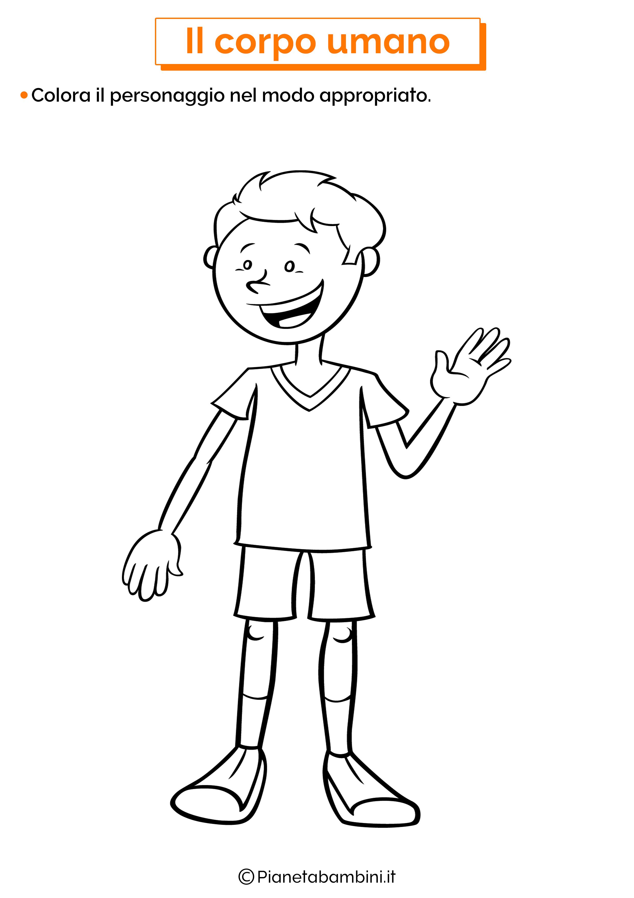 Esercizi sul corpo umano per la scuola dell'infanzia 01