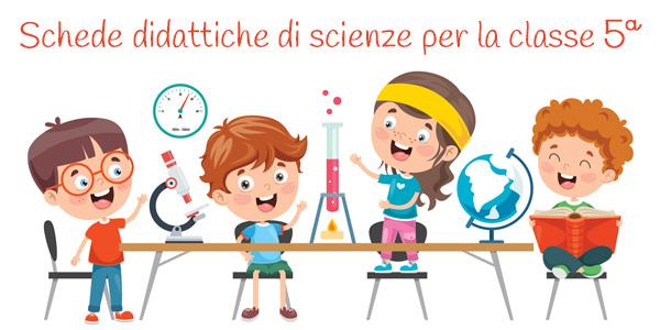 Schede didattiche di scienze per la classe quinta