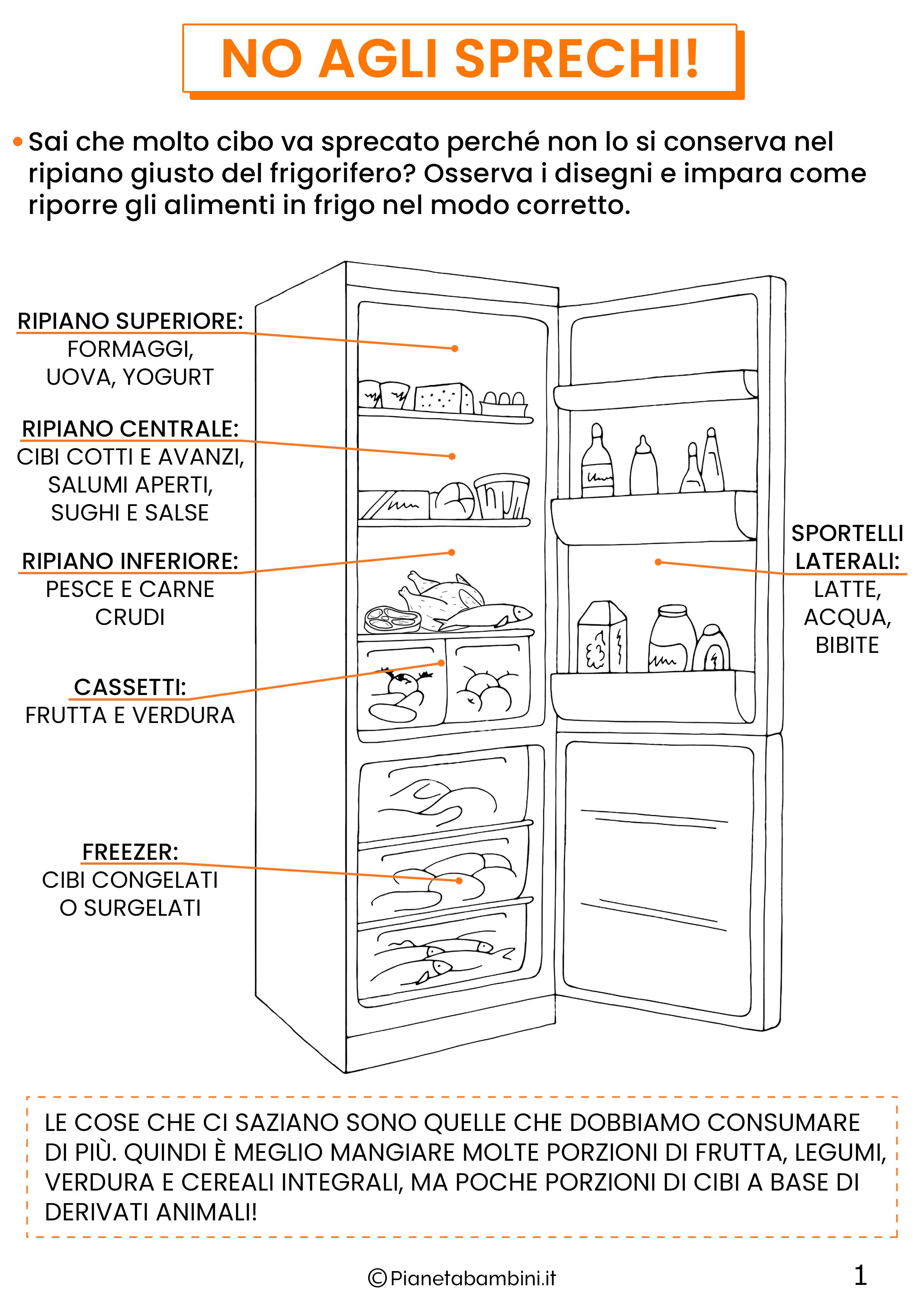 Schede didattiche educazione alimentare classe quinta 1