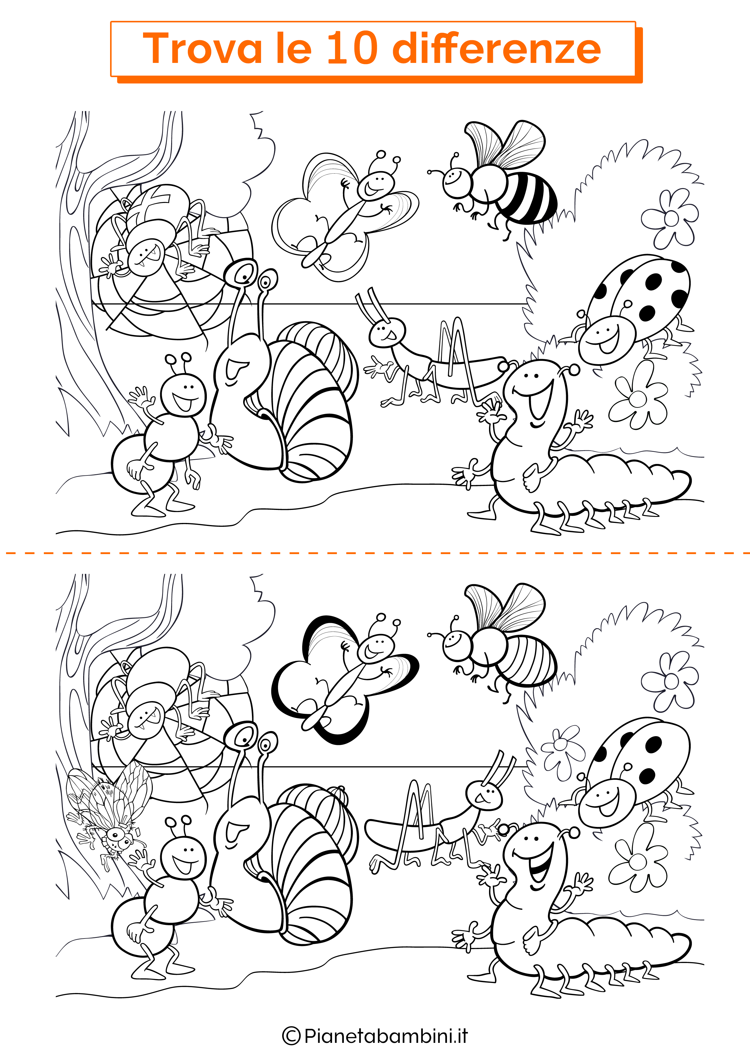 Disegno trova 10 differenze insetti 1