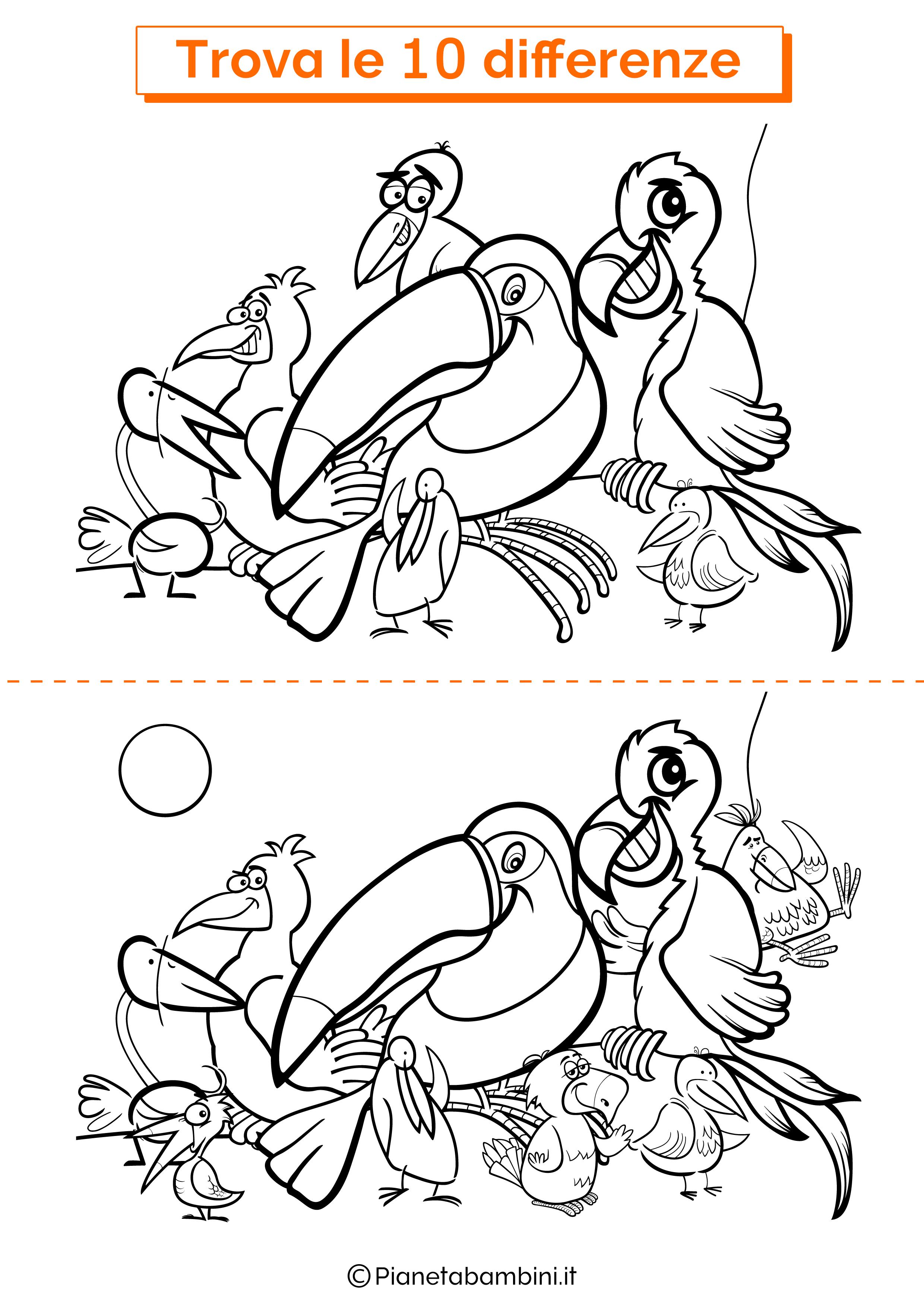 Disegno trova 10 differenze uccelli