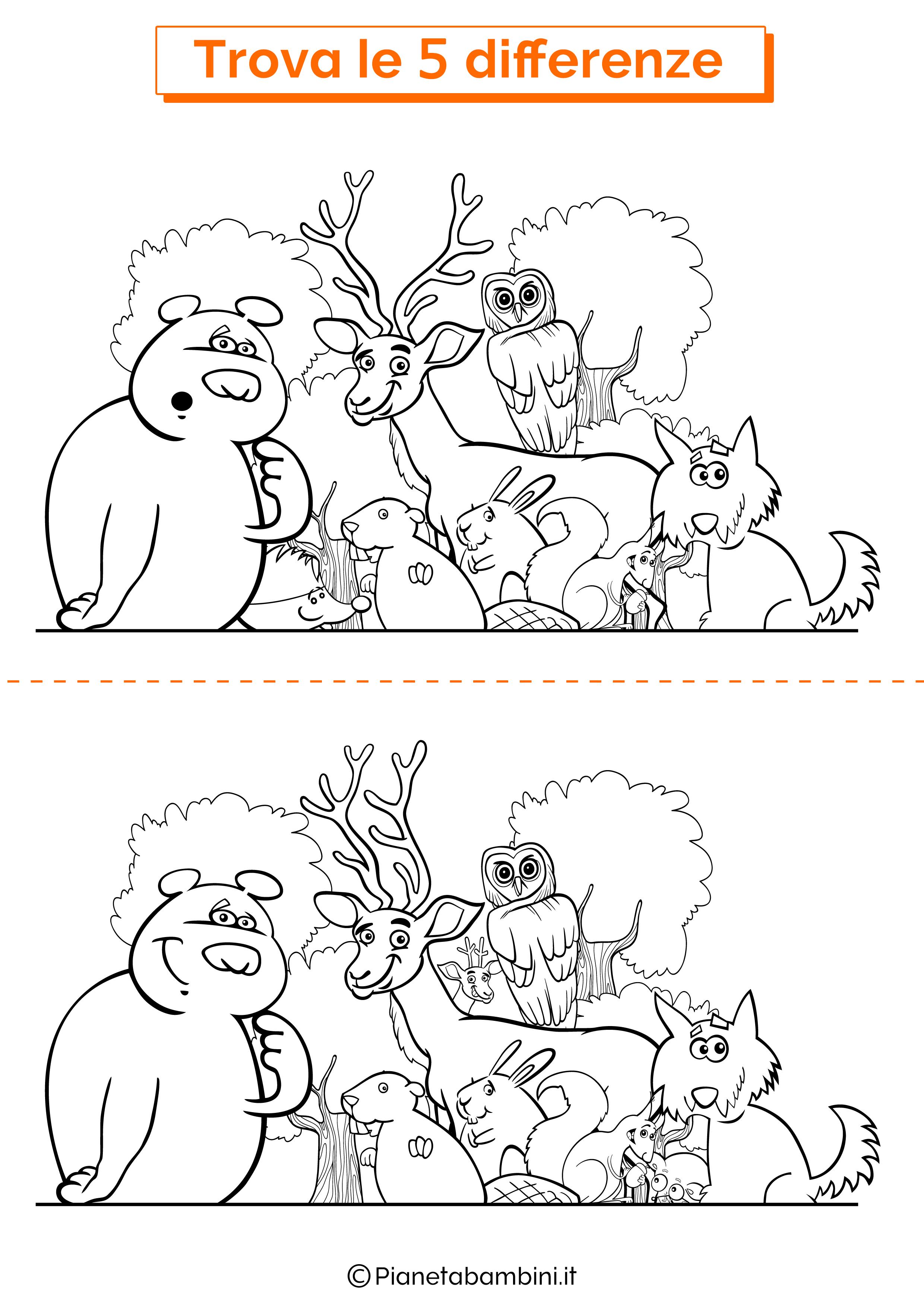 Disegno trova 5 differenze animali del bosco