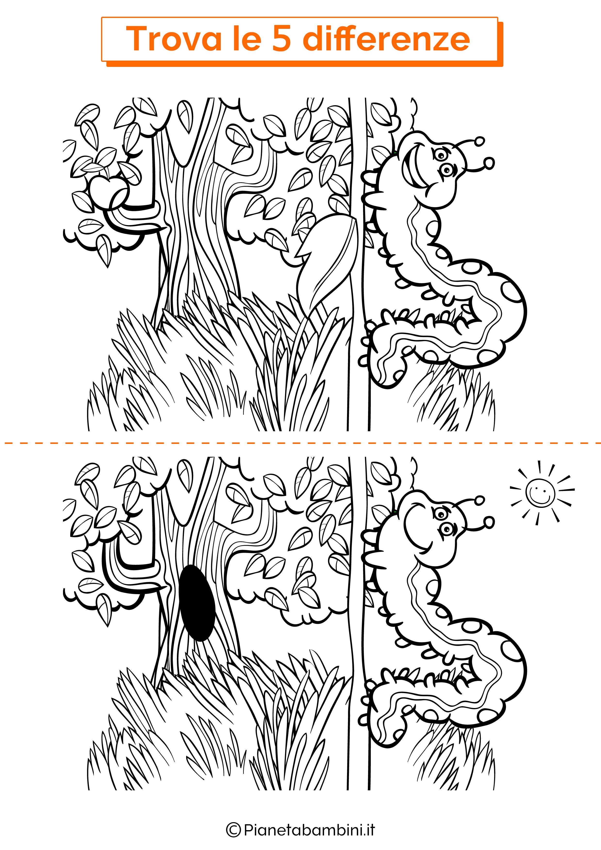 Disegno trova 5 differenze bruco