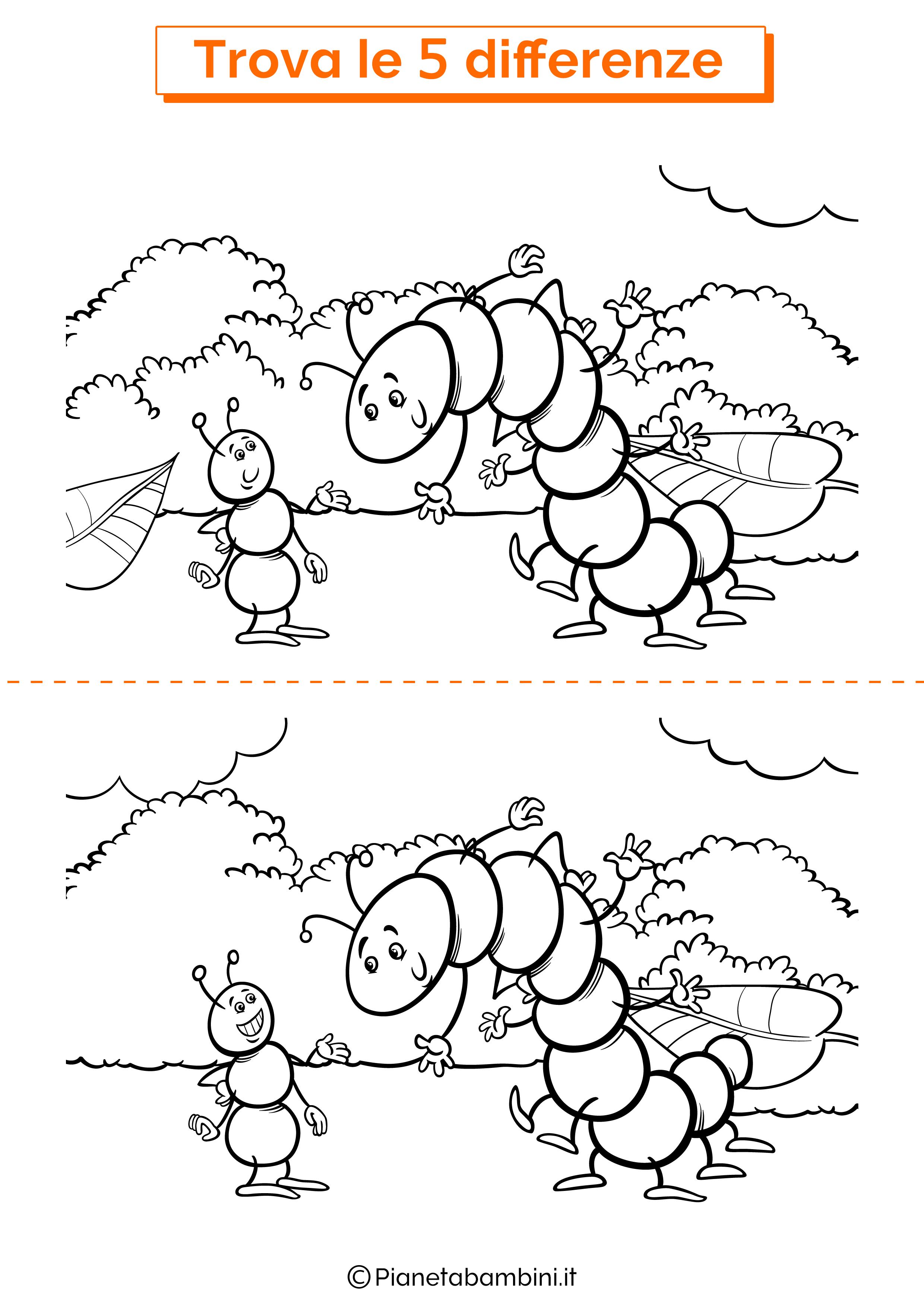 Disegno trova 5 differenze formica e bruco
