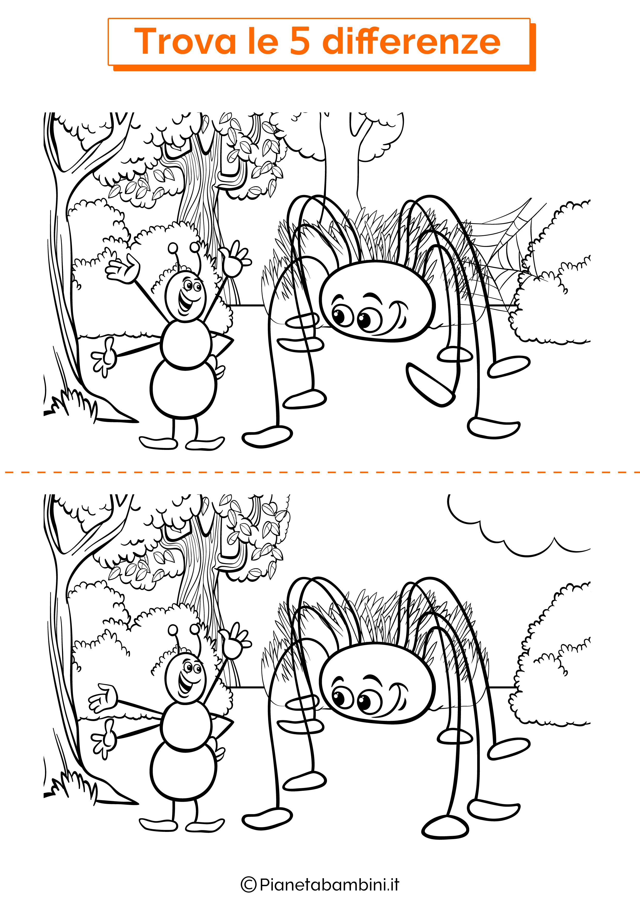 Disegno trova 5 differenze formica e ragno