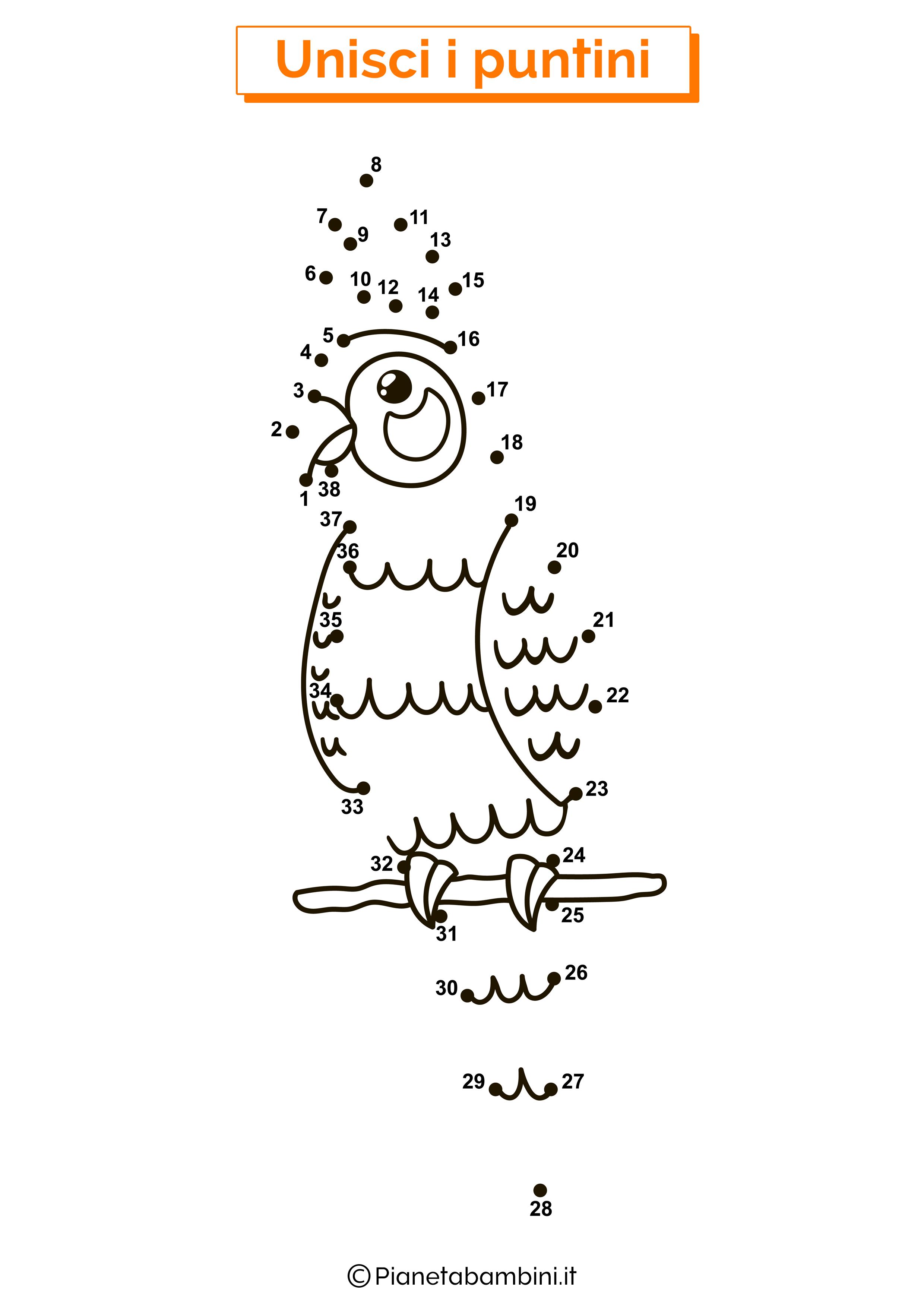 Disegno Unisci i puntini 1-40 pappagallo