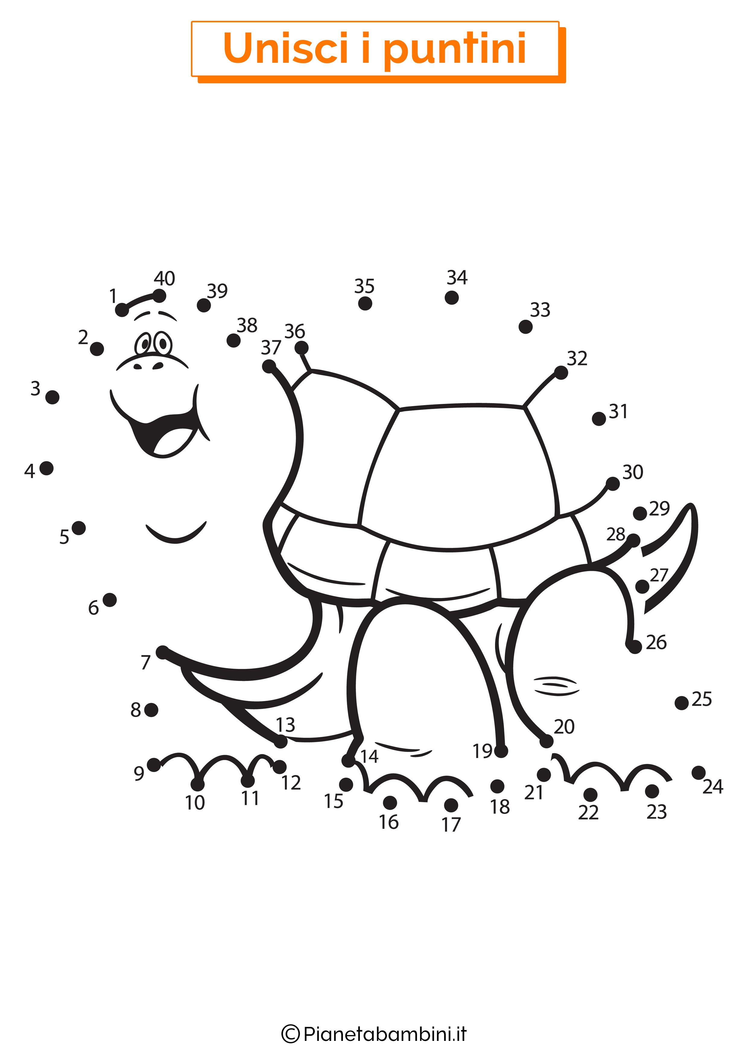 Disegno unisci i puntini 1-40 tartaruga