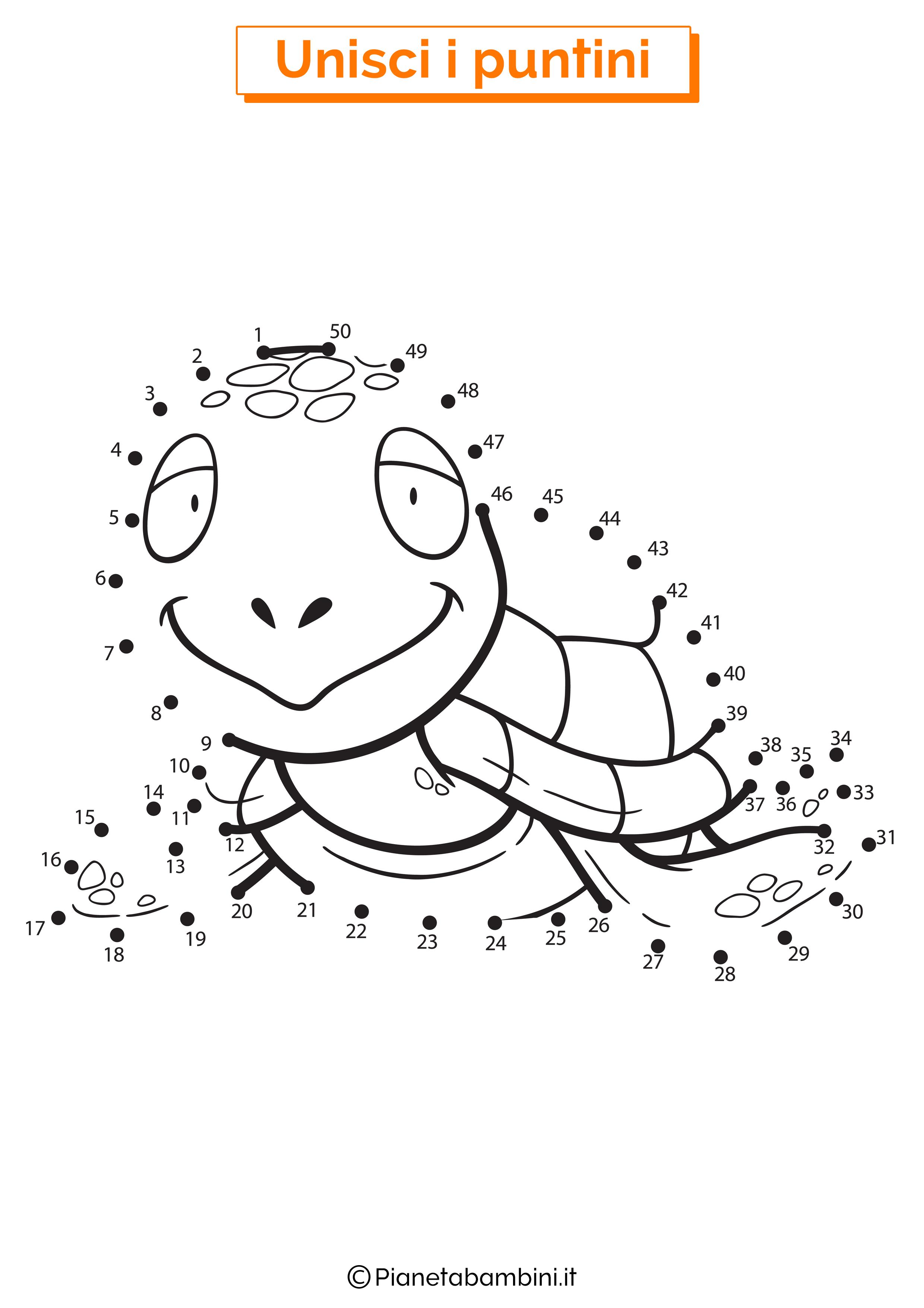 Disegno unisci i puntini da 1 a 50 tartaruga marina