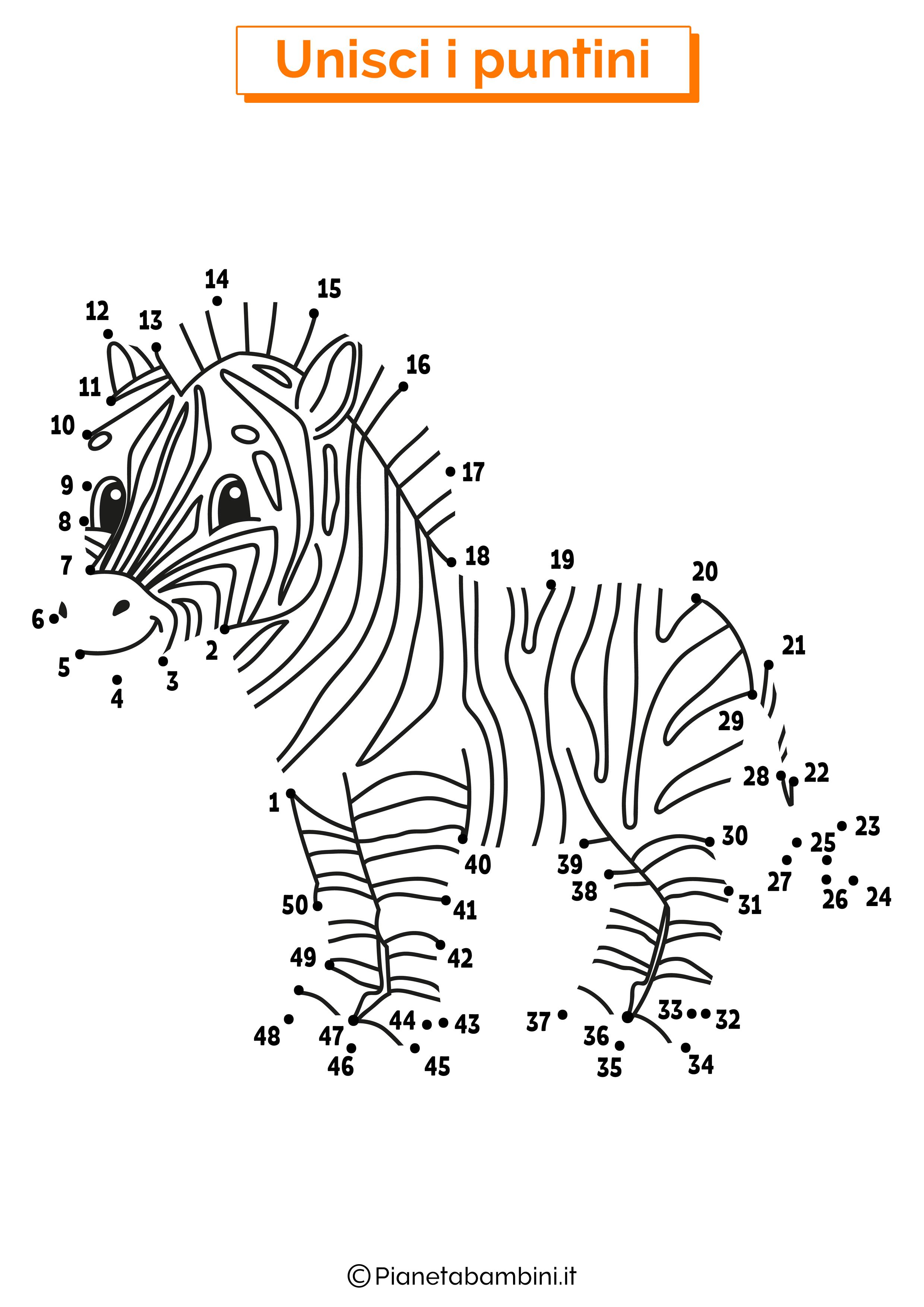 Disegno unisci i puntini da 1 a 50 zebra